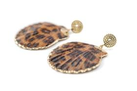 Leo shell
