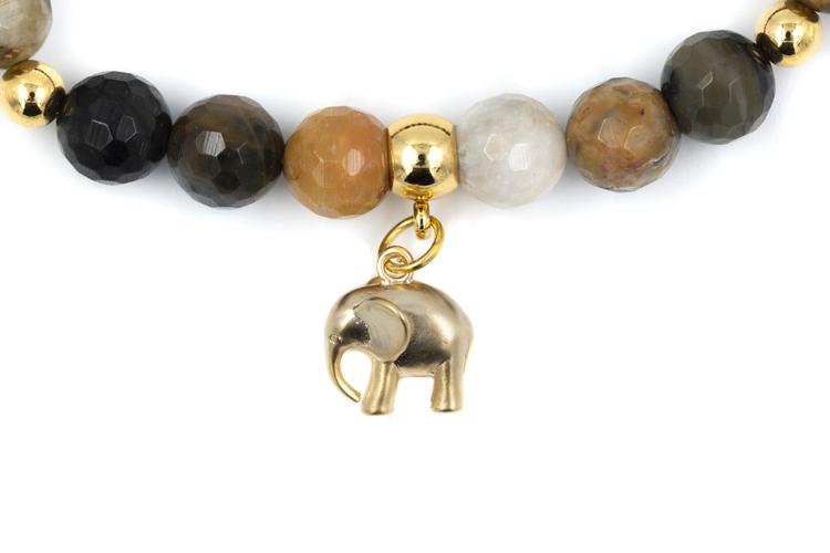 Elephant fall colours