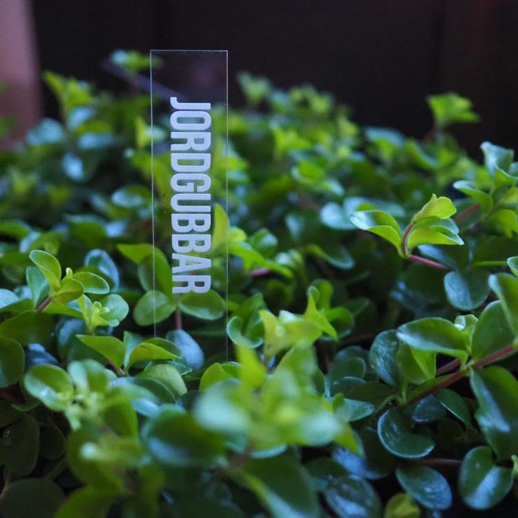 Odlingssticka Plexiglas Design By S.H