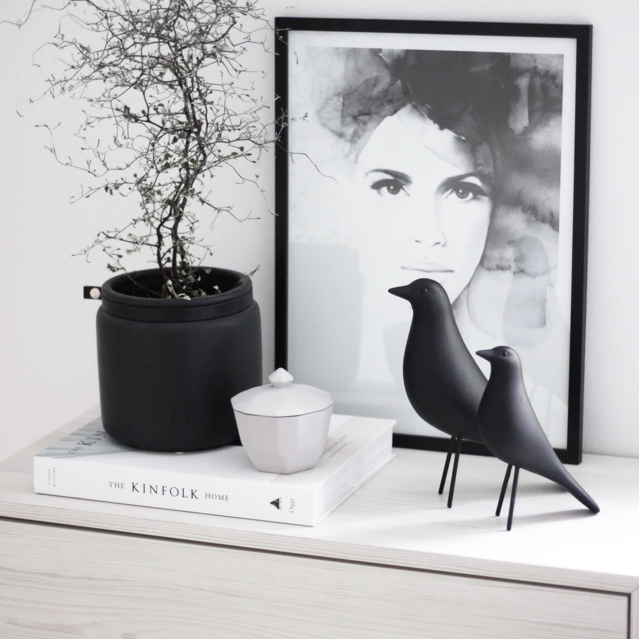 Fågel Svart LITEN