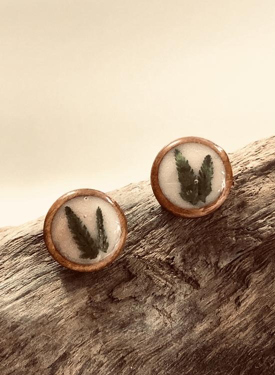 Wood & Fern - örhängen