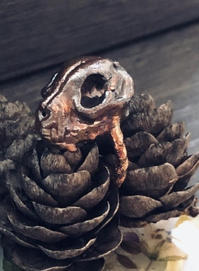 Salem noctis