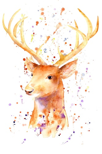 Oh my Deer, it's watercolor everywhere!