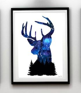 Nightsky, my deer