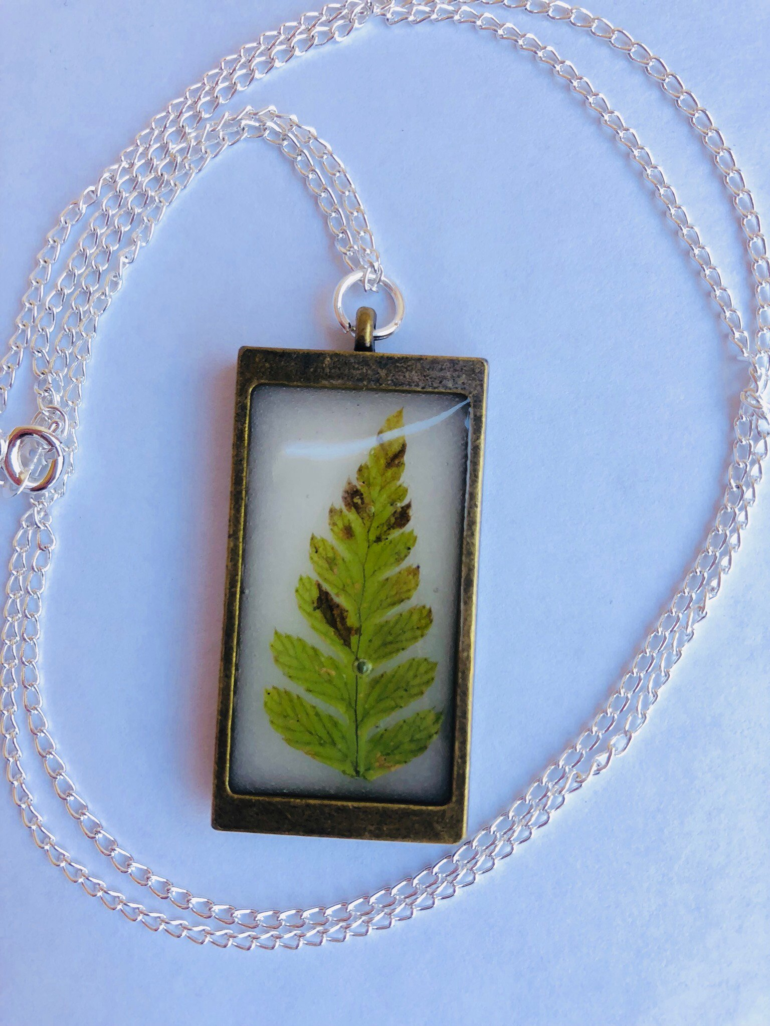 Framed Fern Marmor XL