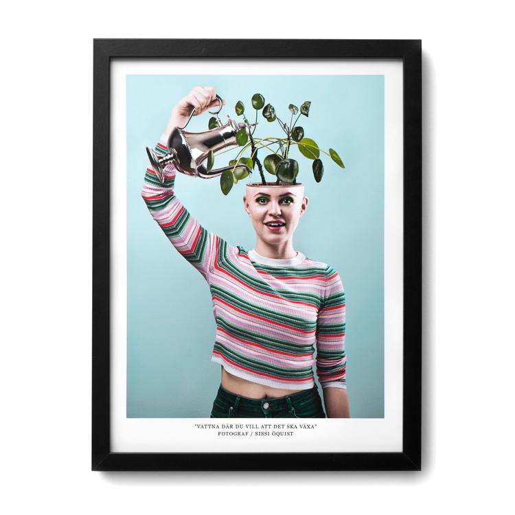 """2:A SORTERING Fotografi """"VATTNA DÄR DU VILL ATT DET SKA VÄXA"""" (poster/print 30x40 cm)"""