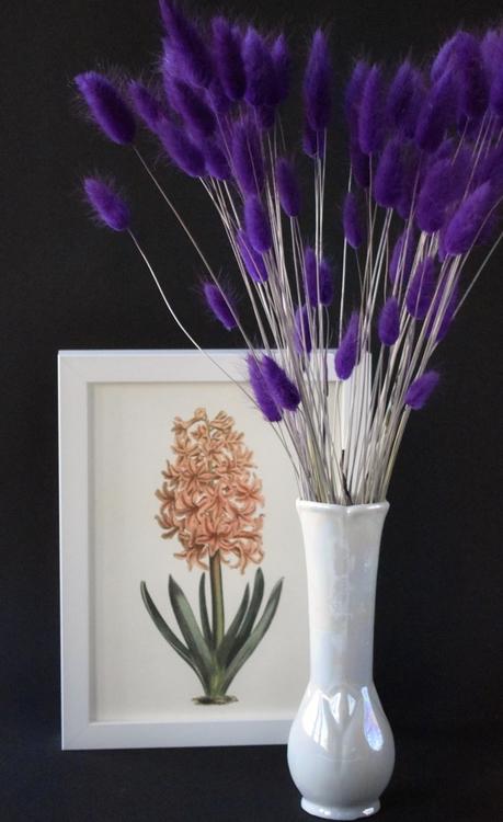 Poster - Hyacint, 18x24 cm