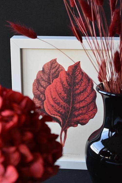 Poster - Röda blad, 18x24 cm