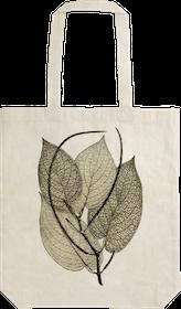 Tygkasse - Pepparväxt