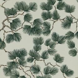 Pine 804-78