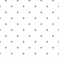 Star 397-03