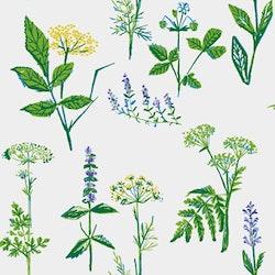 Köksväxter 1789