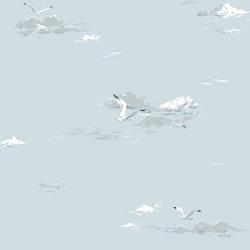 Seagulls 8856