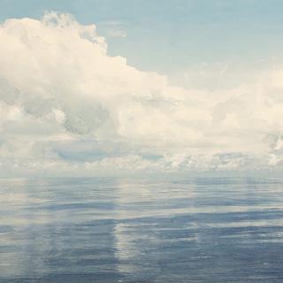 Horizon 8886