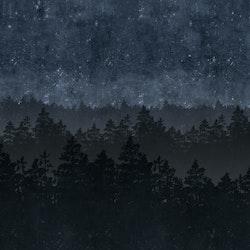 Nordic night 8845