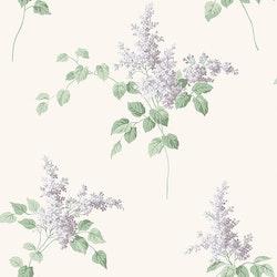 Lilacs 7668