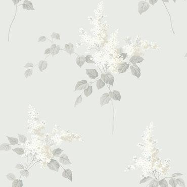 Lilacs 7669
