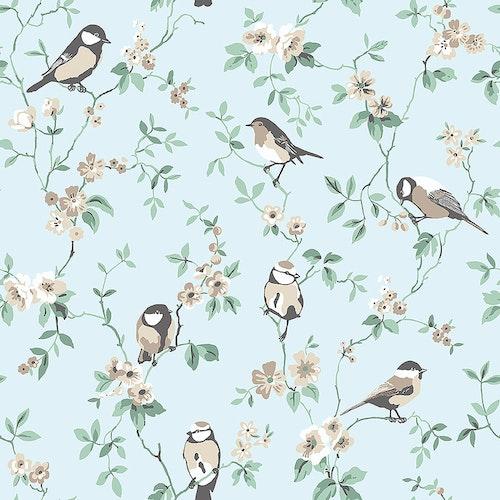Falsterbo Birds 7681