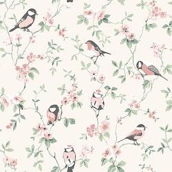 Falsterbo Birds 7682
