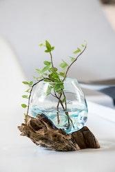 Glasskål på trädrot 20 cm