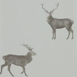 Evesham Deer 216619