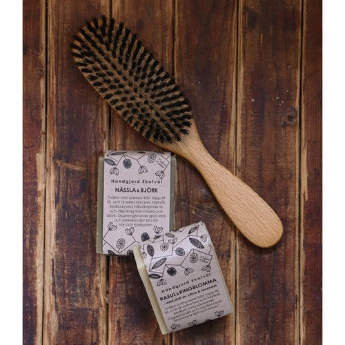 Gift Set Boar Bristle Hair Brush Shaving & Two Shampoo Bars