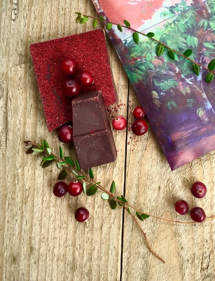 Choklad 65% med Tranbär