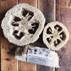 Luffa pillow 2-pack