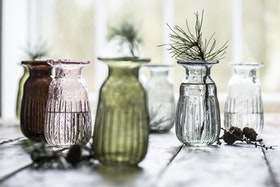 Hyacintvas i grått glas