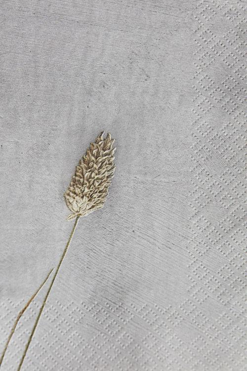 Servett, Grass 2, Ljusgrå