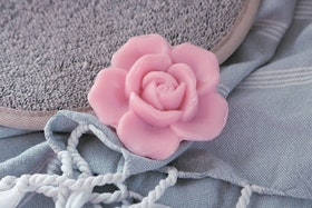 Tvål ros - Terra Midi