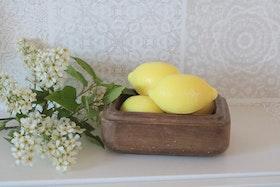 Citrontvål - Terra Midi