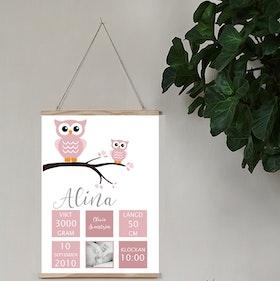 Födelseposter, doptavla, namntavla Ugglor dusty pink