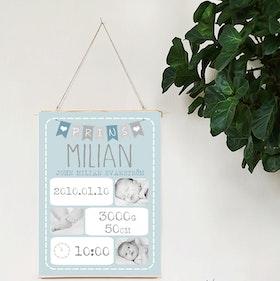 Födelseposter, namntavla, doptavla Prins blå