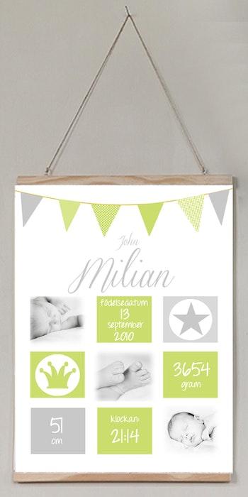 Födelseposter Ljuvlig grön med foton
