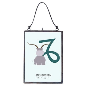 Poster Stenbocken
