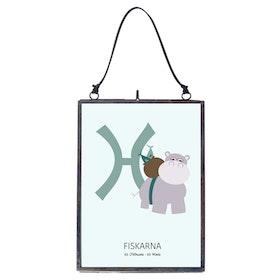 Poster Fiskarna