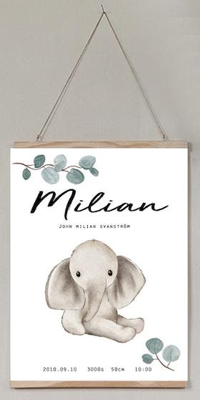 Födelseposter Elefanten