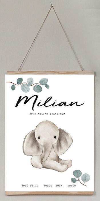 Födelseposter/doptavla/namntavla Elefanten