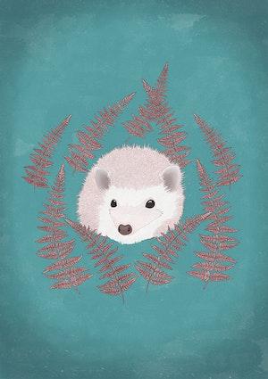 Light hedgehog