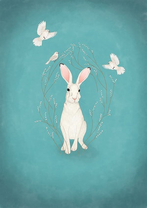 White hare - turquoise