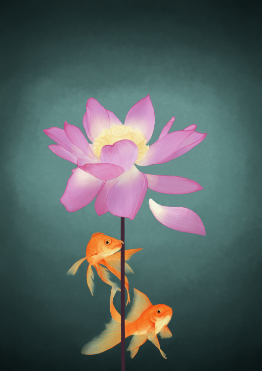 Lotus and the fishes