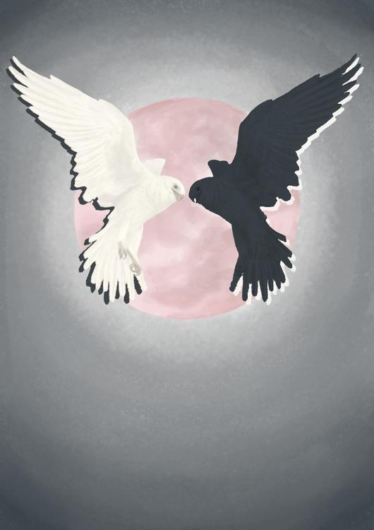white and black falcon