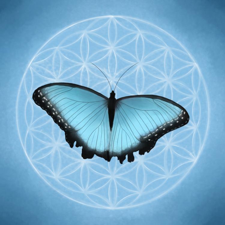 Livets fjäril blå