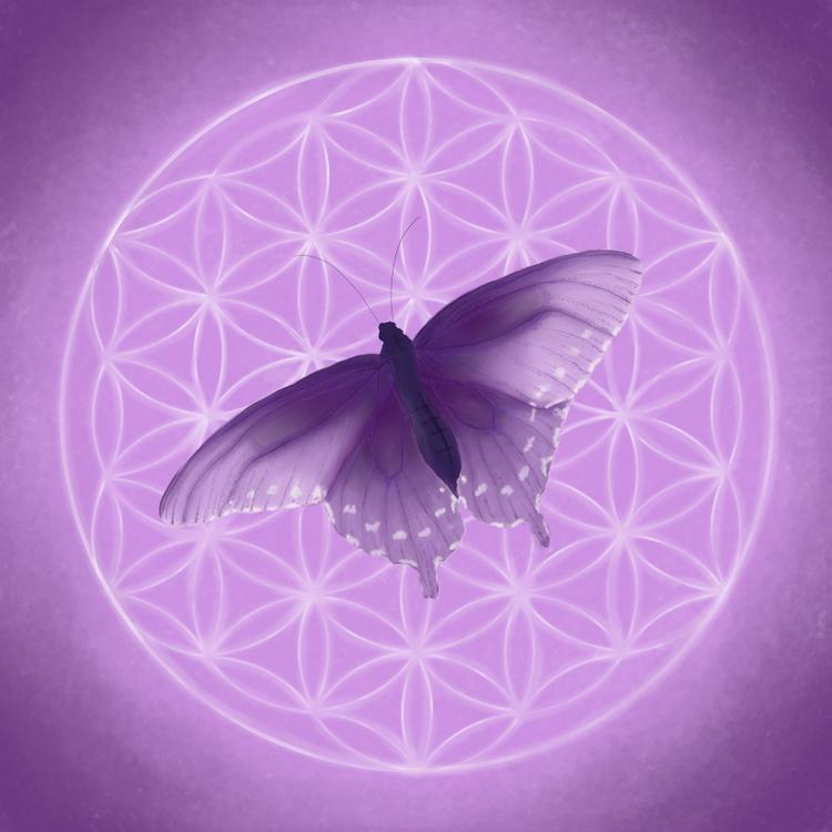 Livets fjäril lila
