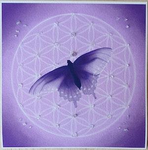Livets fjäril lila med Ametist och Bergskristall