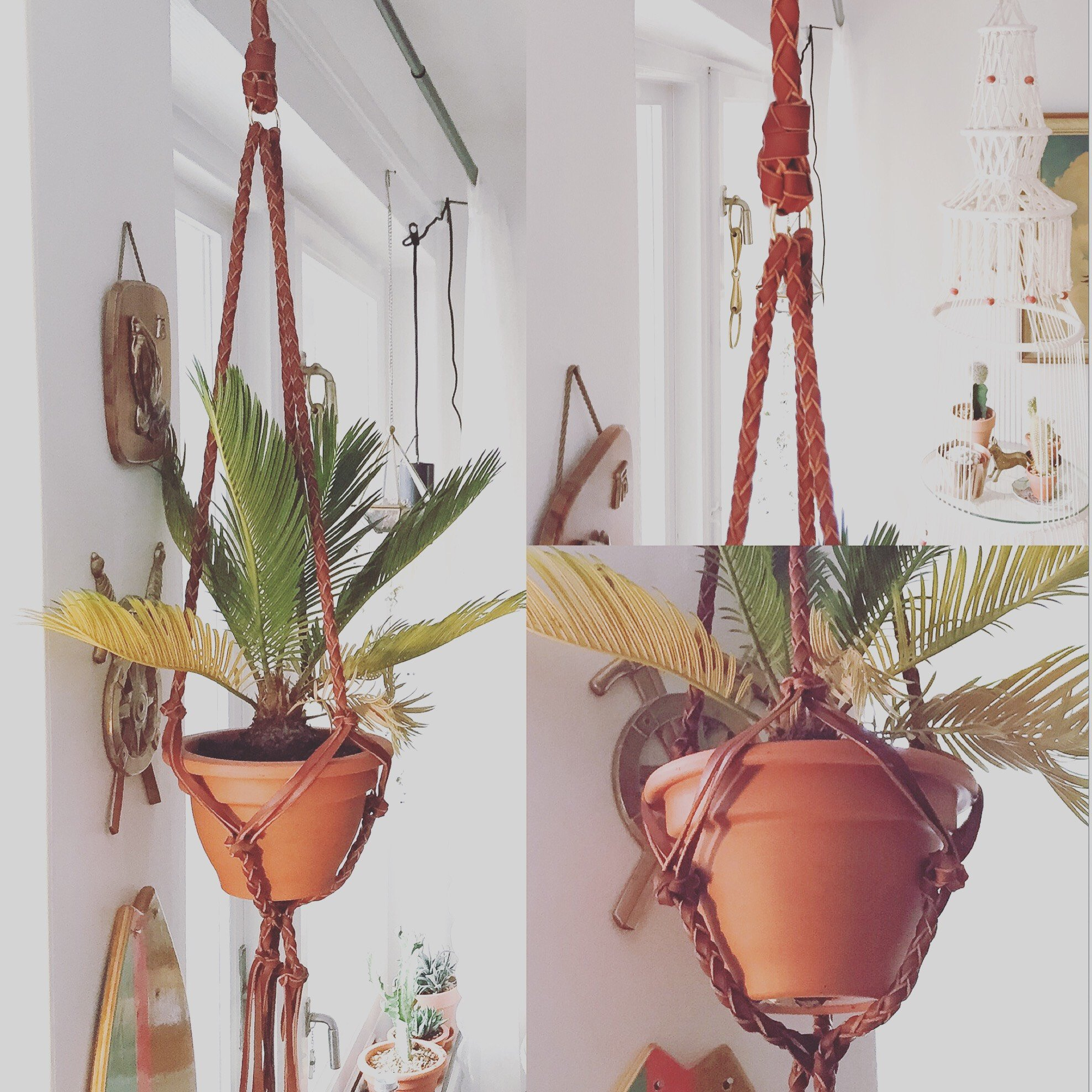 • Plant Hanger Braided •
