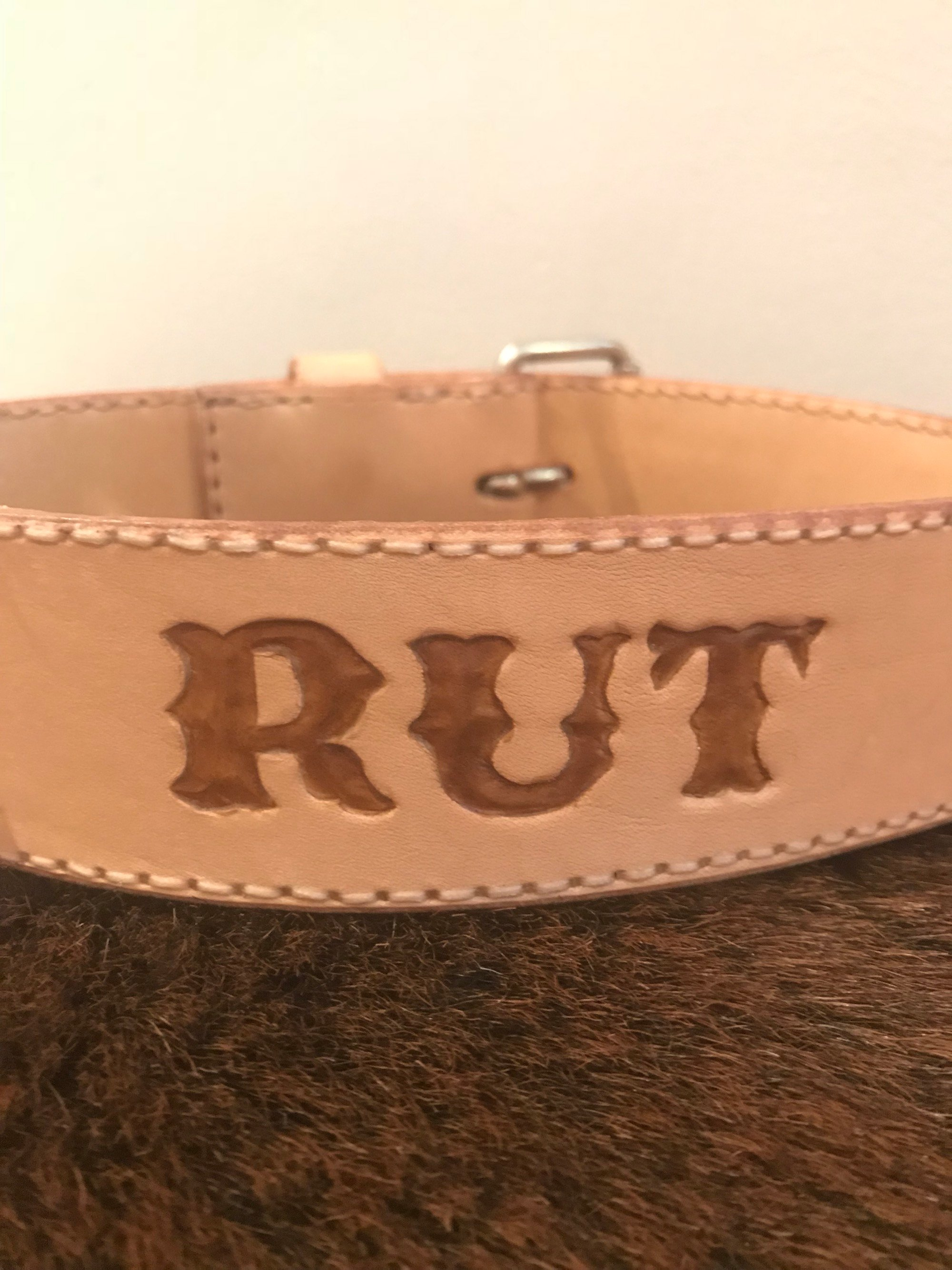 • Dog Collar Custom Name • 5 Colors •