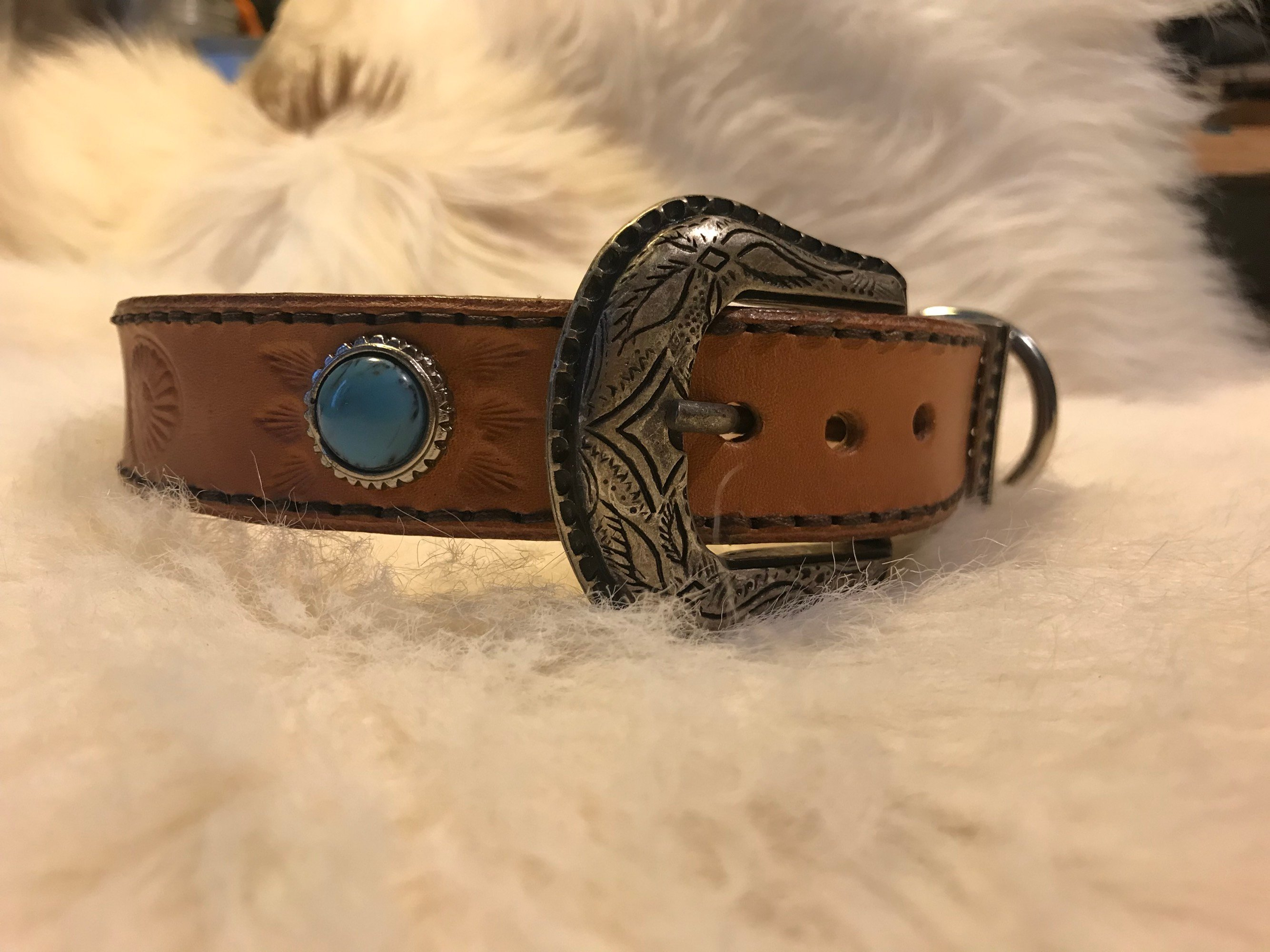 • Dog collar Sample •