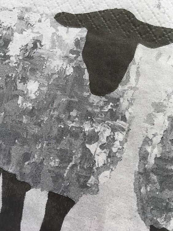 Närbild på servett med Gotlandsfår. Fårkonst på servett. Snygga servetter i snygga färger. Inredningsdeltalj till fester.